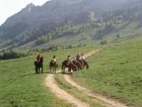 Horse riding centre