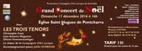 banderole-pontcharra-12-12-16-869