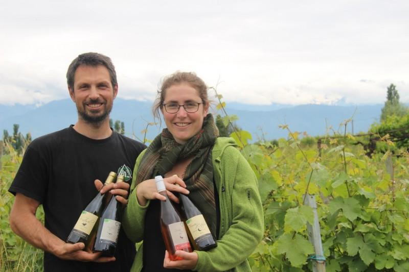 vins-cavagna-apremont-1042