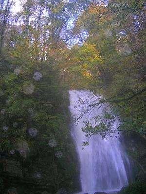 gresivauda-cascade-alloix-0003-1718